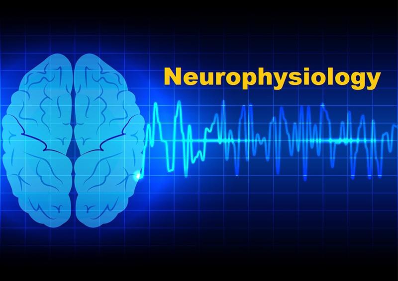 مبانی نوروفیزیولوژیکی حرکت: اختلالات قشری مغز