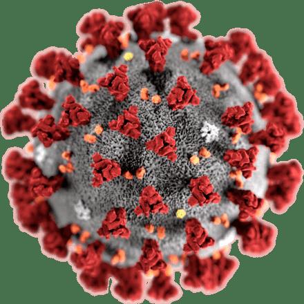 علائم تشخیص بیماری ویروس کرونا